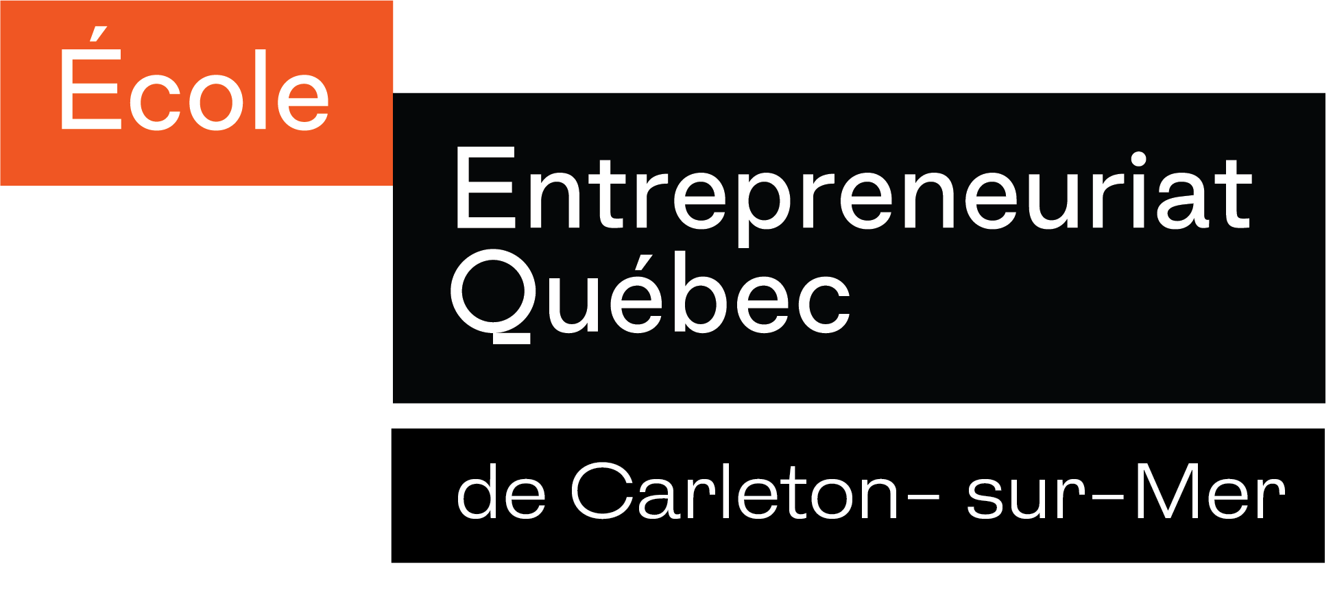 Logos ÉEQ de Carleton1.jpg